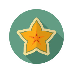 Starfruit Carambola Carom icon. Tropical fruit