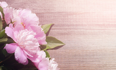 Pink peony flowers. Bouquet of pink peonies on old wooden background close up.