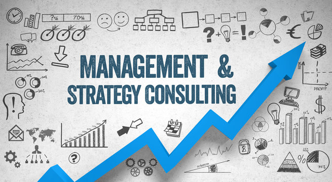 Management & Strategy Consulting