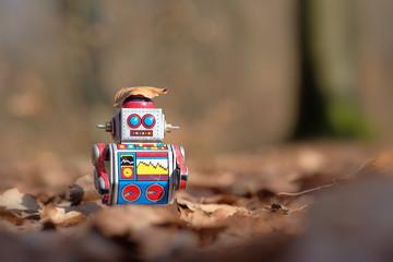 Kleiner Roboter auf Abenteuerwanderung
