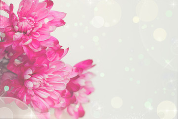 Pink flowers greeting card in pastel colors