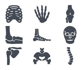 Human Skelton Bones Silhouette Icon