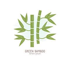 Vector illustration of Bamboo stem