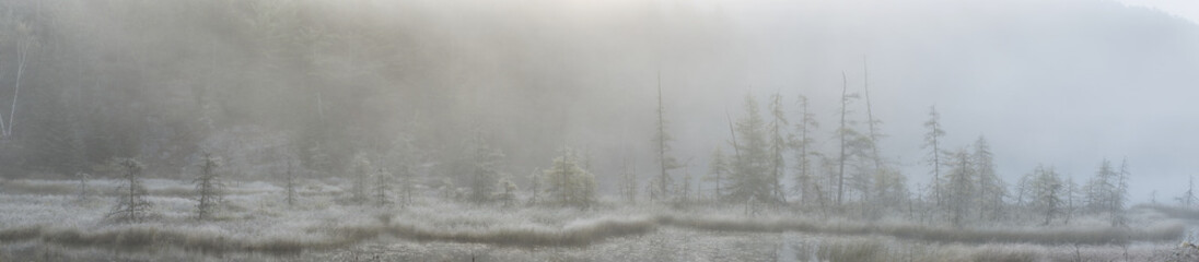 Panoramic view of early morning mist over a small pond along the Rock Lake Road, Algonquin Park; Ontario, Canada