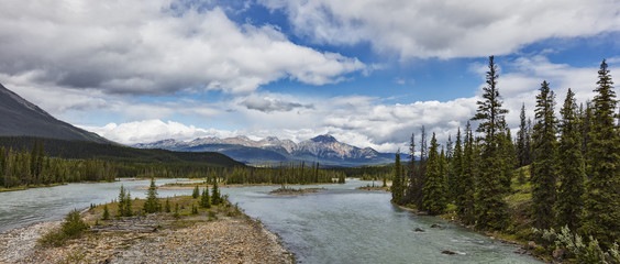 Mountain view along the Athabasca river, Jasper National Park; Jasper, Alberta, Canada