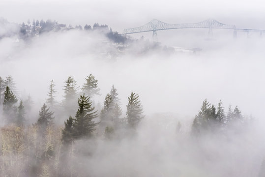 Fog blankets the hills along the Columbia River; Astoria, Oregon, United States of America