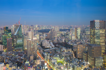 Tokyo city central business downtown with twilight skyline background, Japan