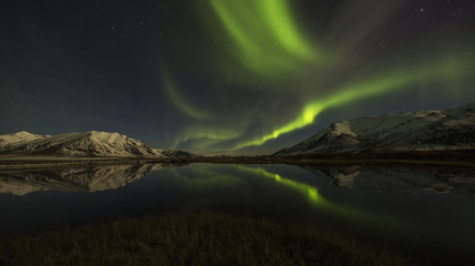 Northern Lights (aurora borealis) over the Dempster Highway and reflected into a pond; Yukon, Canada