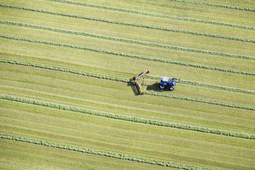 Aerial view of a tractor in a hay field working with machinery making diagonal lines; Chilliwack, British Columbia, Canada