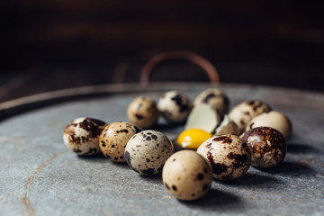 Quail eggs and yolks