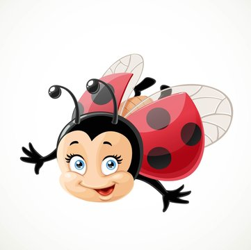 Cute cartoon ladybug fly on a white background