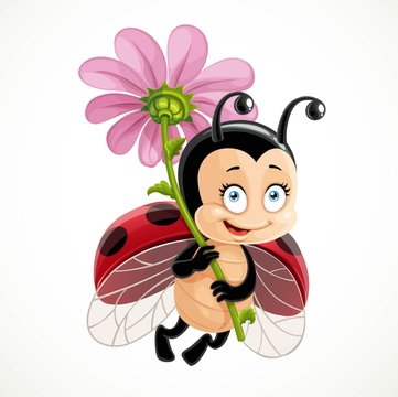 Cute cartoon ladybug fly with big pink flower on a white background