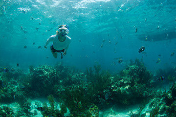 Woman snorkeling by fish and reef, Staniel Cay, Bahamas, Caribbean