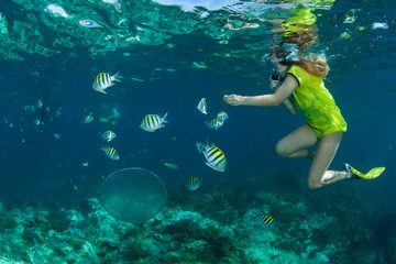 Woman snorkeling with angelfish, Looe Key Reef, Florida, United States of America