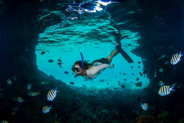 Woman snorkeler and angelfish, Thunderball Grotto, Staniel Cay, Bahamas, Caribbean
