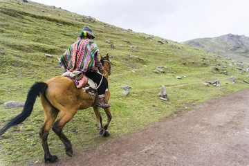native with his mule in front of the mountains