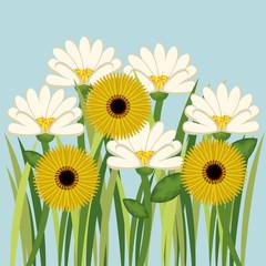 cute flower decoration icon vector illustration design