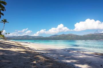 Caribbean coast, blue sky. clear sea