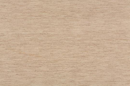 Oak wood texture on macro.