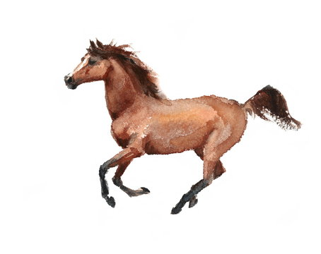 Watercolor Horse Running Hand Drawn Illustration Isolated on white background