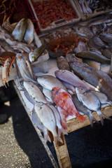 Fischmarkt in Essaouira / Marrokko