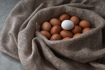 Fresh eggs from the farm to the kitchen.