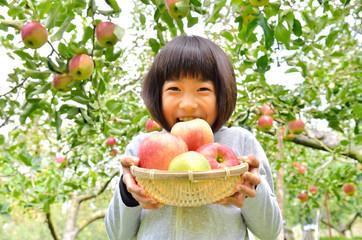 リンゴ狩りを楽しむ女の子