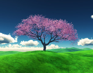 3D Cherry tree in a grassy landscape