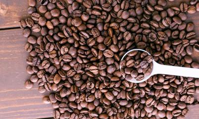 コーヒー豆 Coffee bean