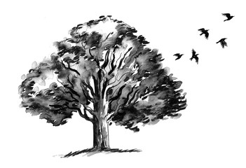 Tree and a flying birds