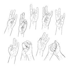 Hand drawn mudra, wise of fingers. Vector illistration of yoga.