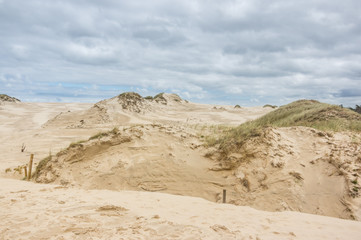 a moving dunes