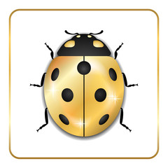 Ladybug gold insect small icon. Golden lady bug animal sign, isolated on white background. 3d volume design. Cute jewelry ladybird design. Cartoon lady bird closeup beetle. Vector illustration
