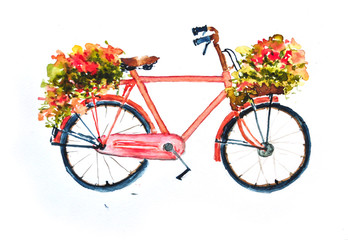 Red retro bicycle nd flowers  on white, watercolor  painting