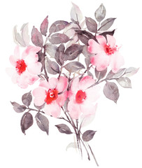 Botanical watercolor painting with white rosebush in blossom