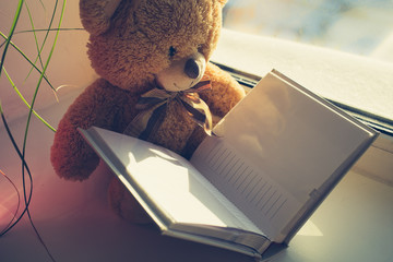 Teddy bear and blank photo album
