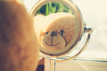 Teddy bear looking at myself in the mirror