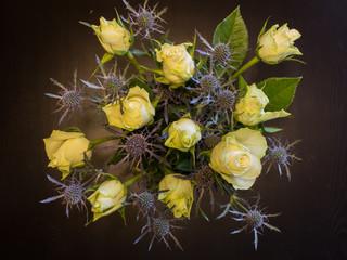 Rosen und Disteln