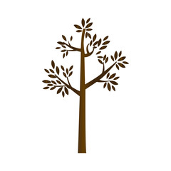 brown silhouette tree with leaves and trunk vector illustration