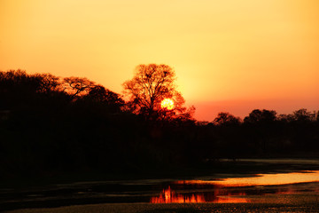 Sunset above a river in Zimbabwe