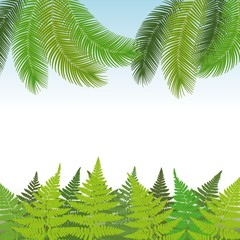 Illustration nature tropical background with ferns and palm leaves. Exotic Banner - Vector.