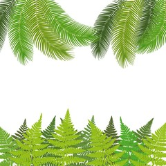 Tropical background with ferns and palm leaves. Exotic Banner - Vector.
