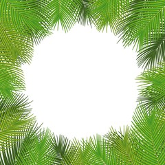 Vector tropical frame. Palm leaves illustration, with a place for text.Vector.
