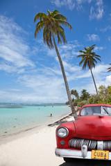 voiture cubaine sous les cocotiers