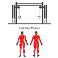 Gym dual cable machine