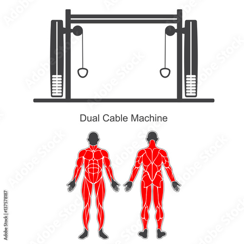 dual cable machine