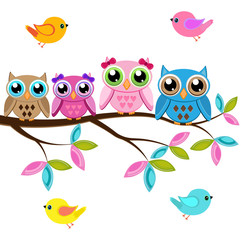 Canvas Prints Owls cartoon Four owls on a branch with birds