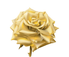 Gold Rose.