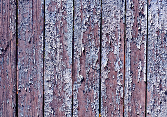 Grungy color fence texture.