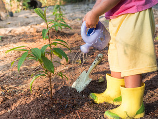Kid giving water after planting young tree